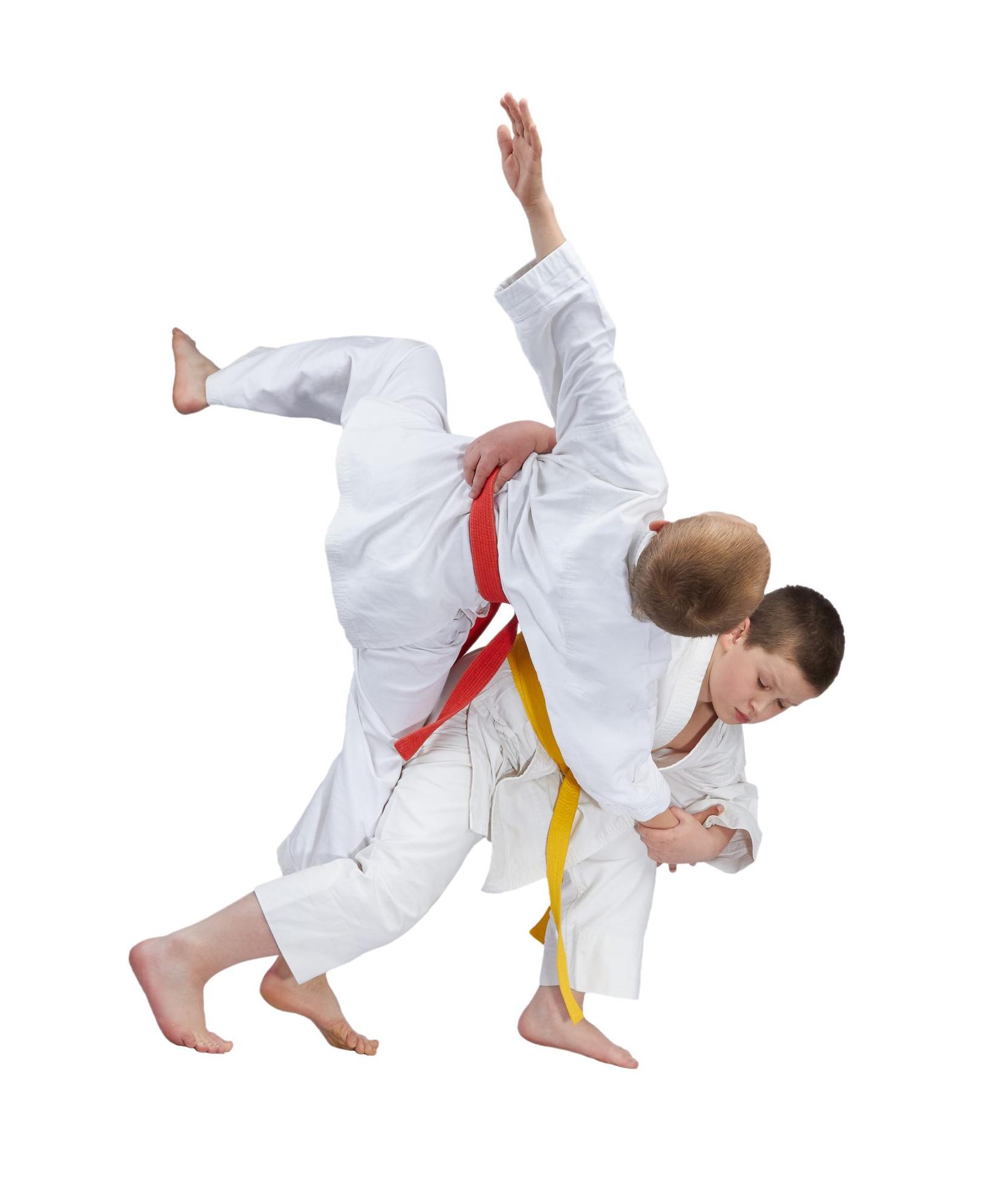 Ecole de Judo et Ju-Jitsu Lémanique